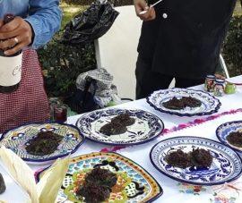 Concurso gastronómico de chapulines