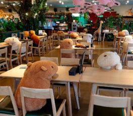 Zoológico de Japón para garantizar el distanciamiento social