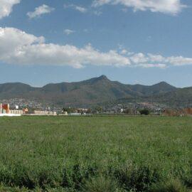 Reabren parques nacionales y zoológicos en el Estado de México