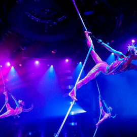 Vive los mejores shows del Cirque du Soleil desde tu casa
