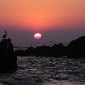 Conoce las atractivas playas del estado de Guerrero