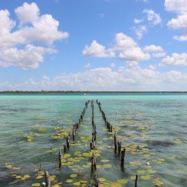 Quintana Roo reporta pérdida de 3 millones de pesos en turismo