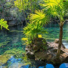 Turismo de Naturaleza, la nueva tendencia en viajes
