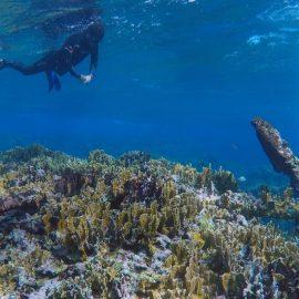 INAH halla vestigios de un velero que naufragó hace más de 200 años