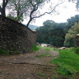 Parque Ecológico de la Ciudad de México gana premio internacional