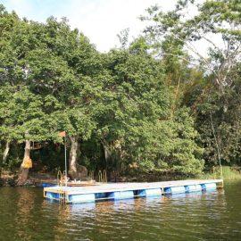 Veracruz y ADO unen fuerzas para promover el turismo del estado