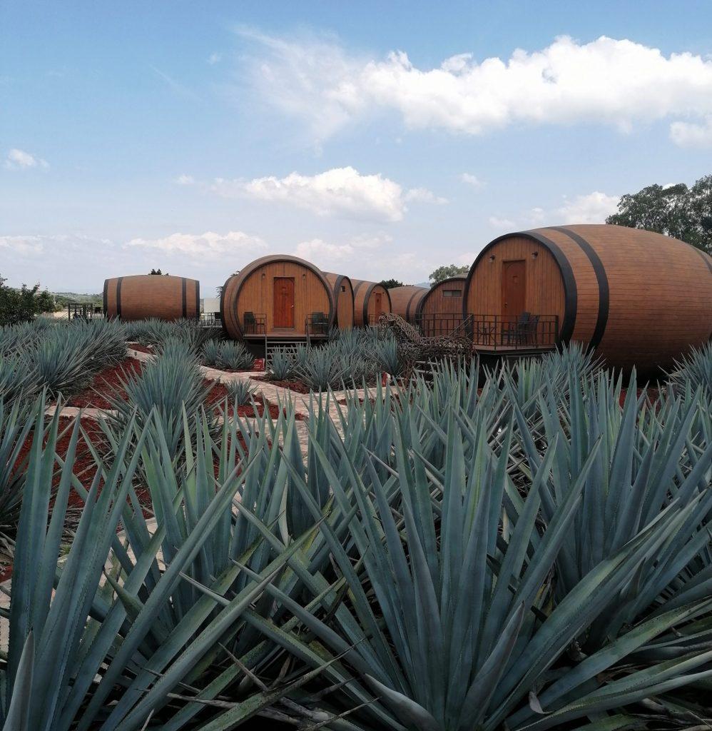 hotel-matices-en-tequila-jalisco