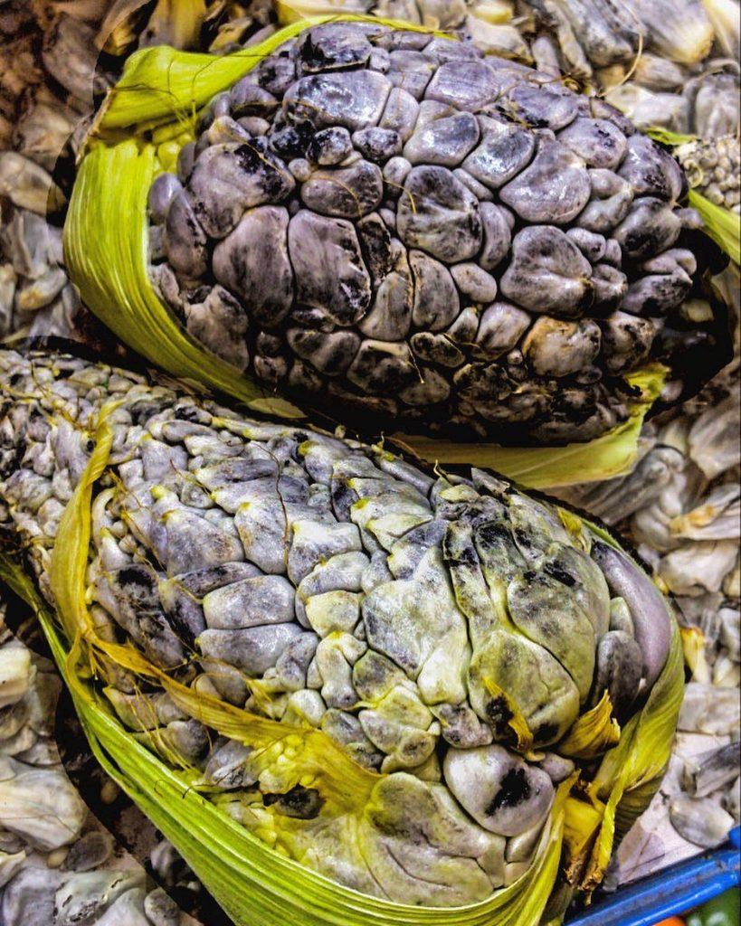 huitlacoche comida