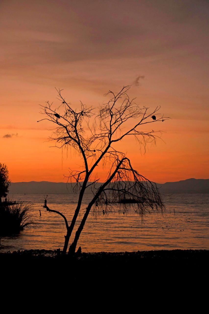 Ajijic establecida a orillas del Lago de Chapala