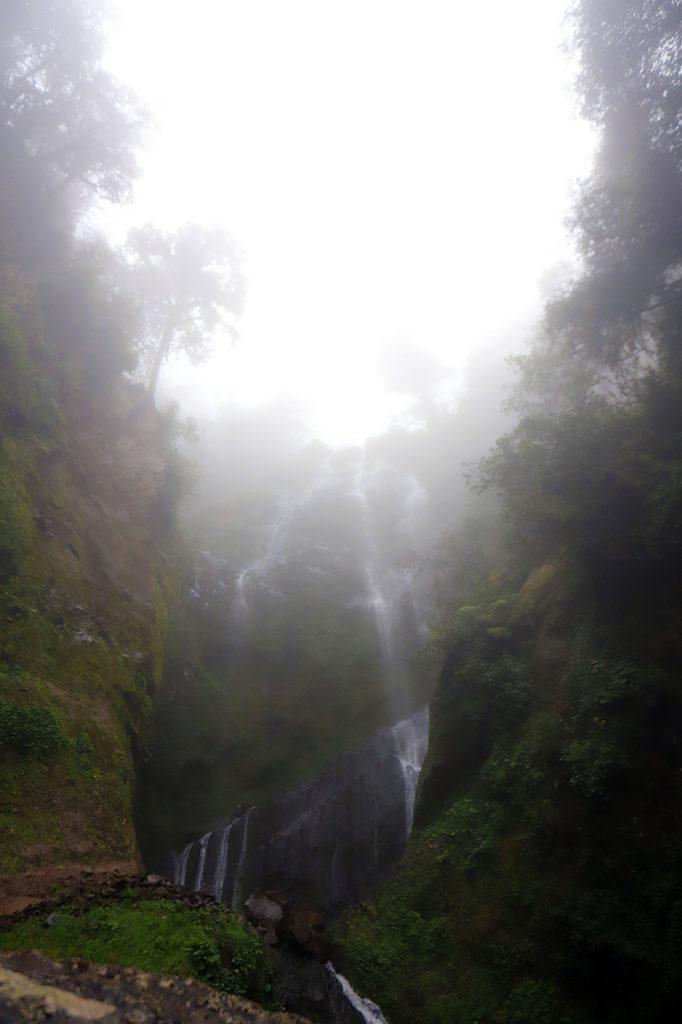 Honey, Puebla cascadas paraíso