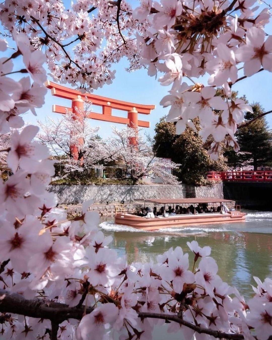 jardines de kioto templos