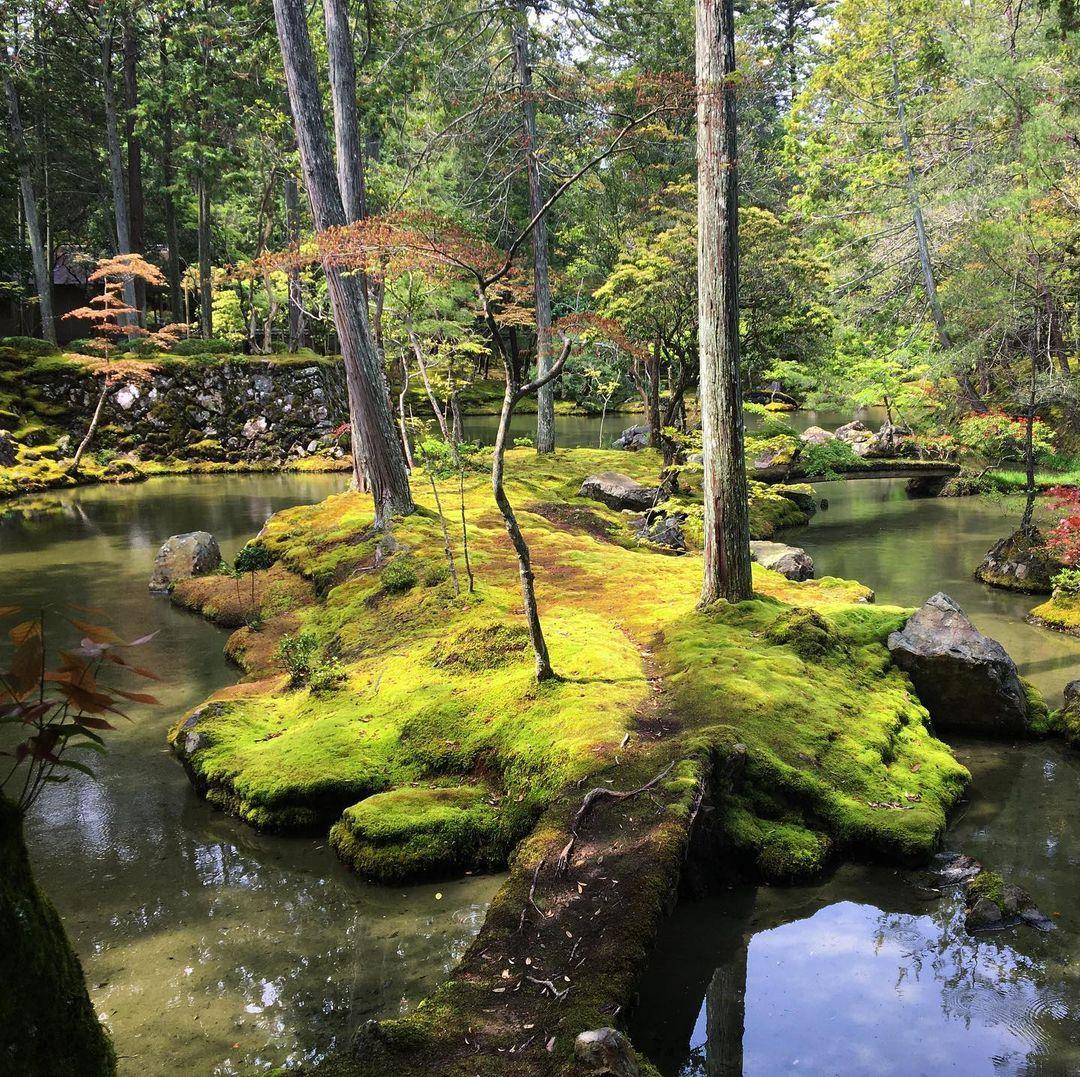 jardines de kioto Saihō-ji