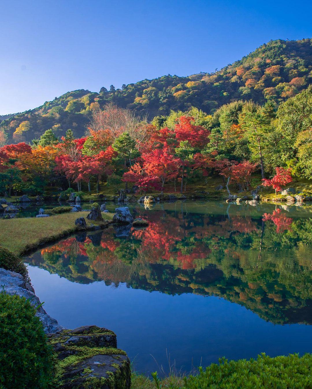 jardines de kioto japon