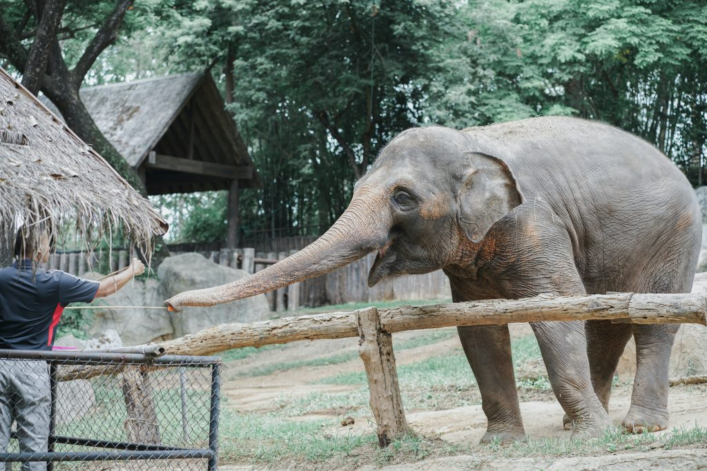 zoológicos en México