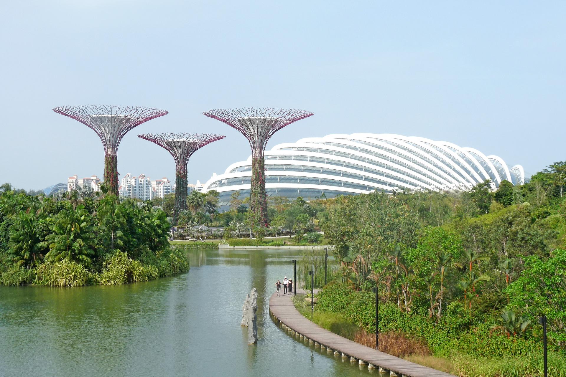 jardines de la bahía tecnología
