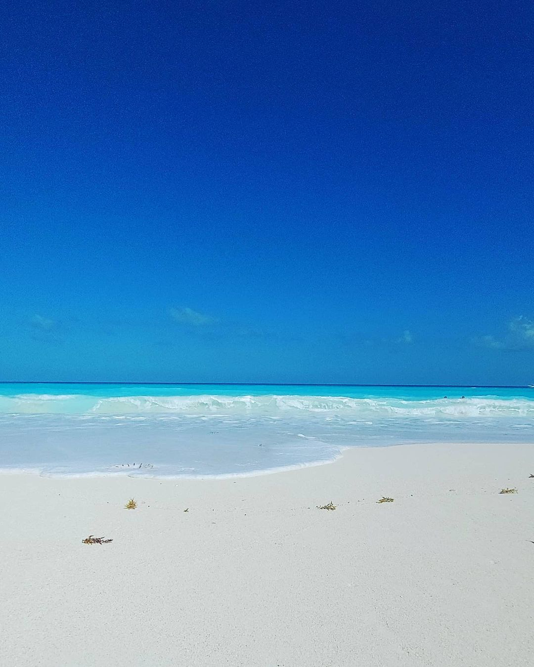 playa marlin en cancun