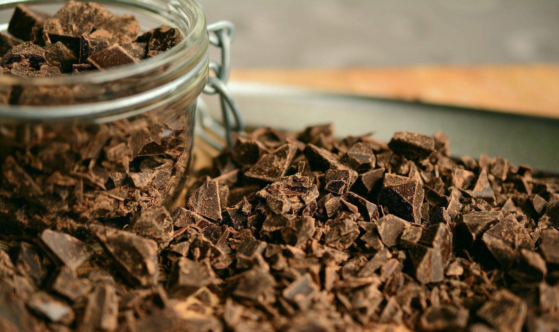 dia mundial del cacao y chocolate