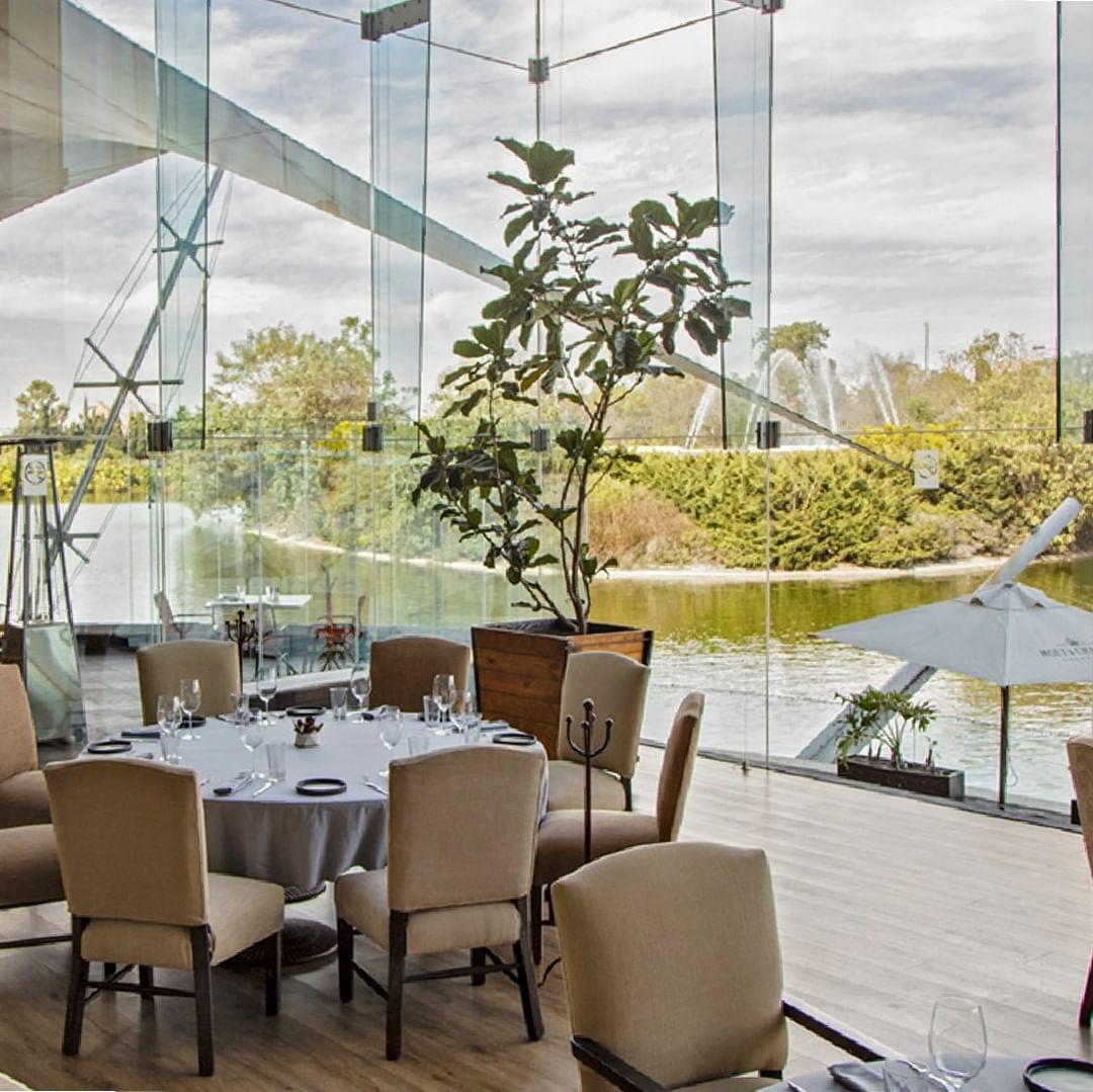 restaurante el lago cdmx